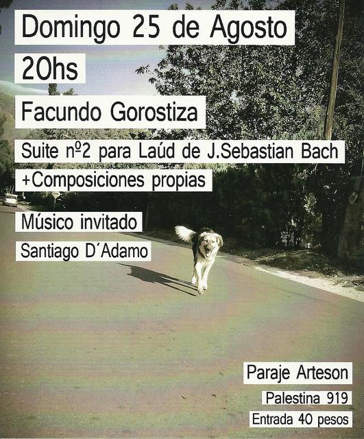 Facundo Gorostiza