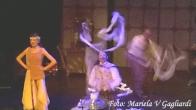 Los fabulosos singer22